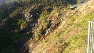 АВСТРАЛИЯ  Природа  Австралии  Джунгли  Лазаем по  горам  Неизвестное Животное