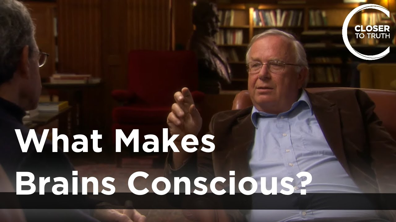 Mike Merzenich - What Makes Brains Conscious?
