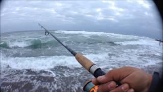 Pesca de Corvina En Iquique