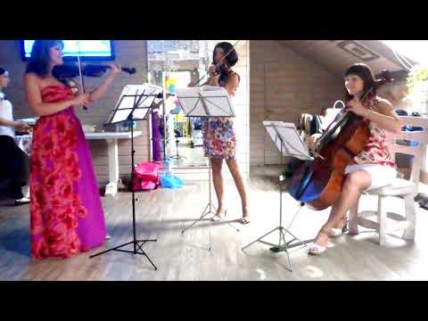 Baixar Bowriders String Quartet - Download Bowriders String