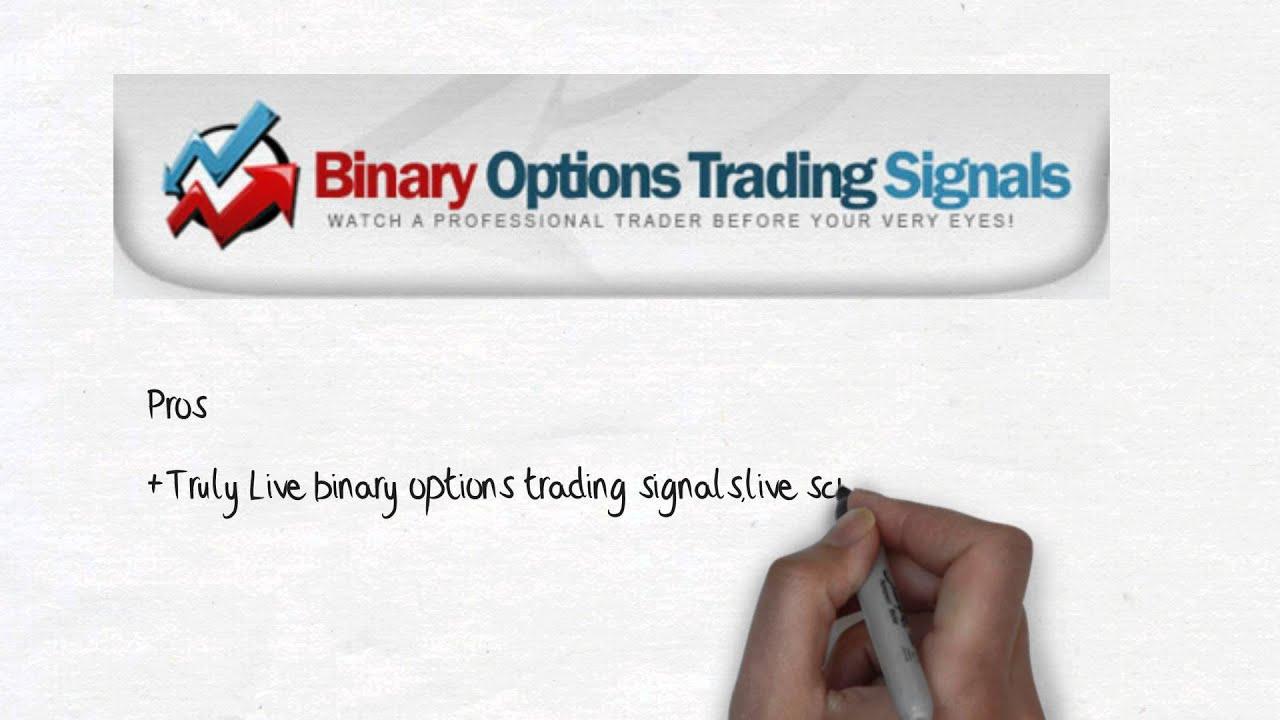 binary options live signals bols