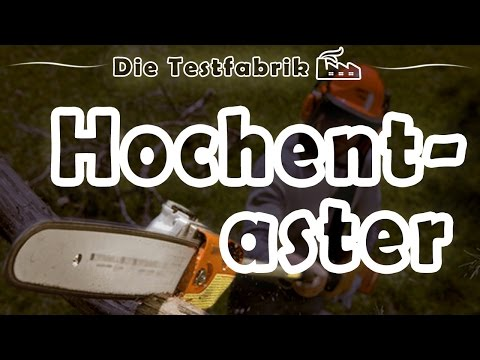 hochentaster test 2016 garten doovi. Black Bedroom Furniture Sets. Home Design Ideas