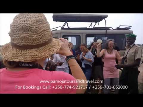 Pamoja Tours and Travel Uganda Limited
