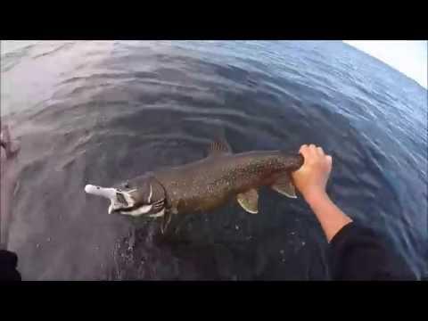 Jigging Deep Summer Lake Trout (Gods Lake Elk Island Lodge)(Garmin EchoMap 52 Dv CHIRP)