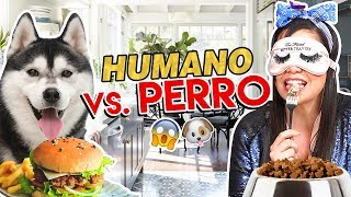 COMIDA DE PERRO vs HUMANA 🤮 Reto EXTREMO! | Camila Guiribitey