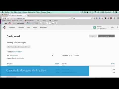 2   Creating & Managing Mailing Lists (MailChimp Course)