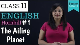 Summary of The Ailing Planet in Hindi   Class 11   hornbill