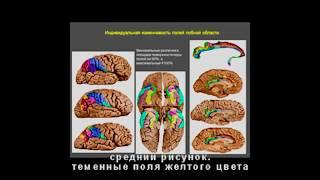 Всю жизнь диктанты от собственного мозга