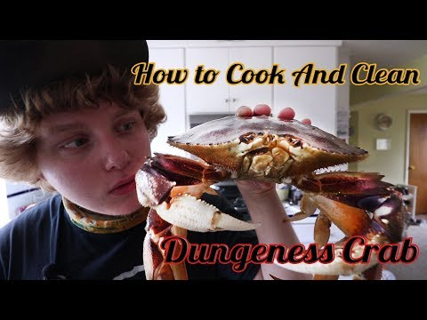 How to Cook and Clean Dungeness Crab