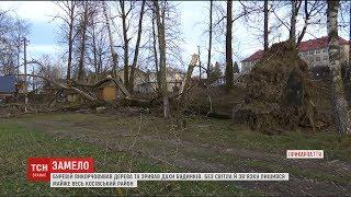 Буревій на Прикарпатті повикорчовував дерева та позривав дахи будинків