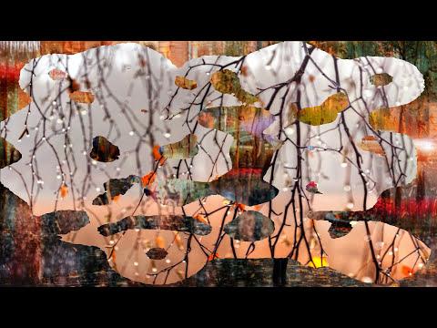 Осенние фотографии | В городе осень... в городе дождь |  Дождливая живопись и фотореализм | HD