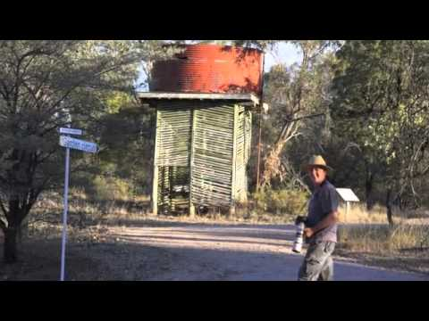 Myall Park Botanical Gardens QLD Australia