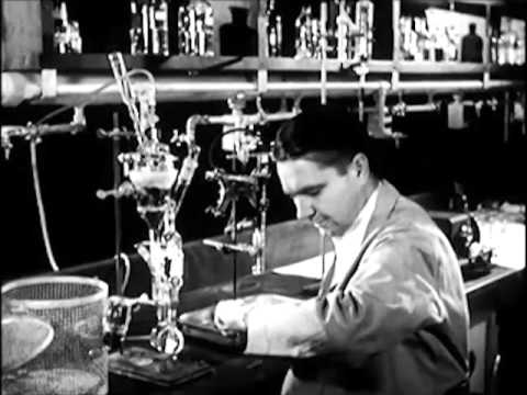 High Energy Radiations Effect on Cells: The Atom and Biological Science (1952) - CharlieDeanArchives