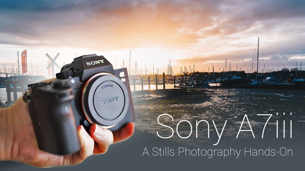 A7 Iii A Stills Photography Review Sample Raw Files