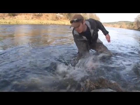 River Dee Salmon Fishing Flyfishing 20 Lbs
