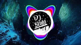 DJ LEBIH BAIK KITA PIARA AYAM
