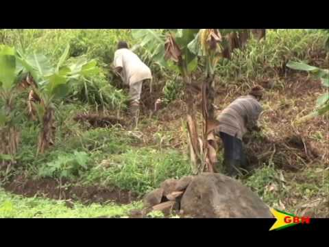 Farmers Easy Financing   05.18.16