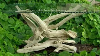 Driftwood side table, driftwood end table, driftwood entry table.