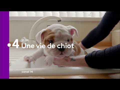 Soirée Groupe France