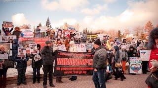 """Новосибирский Митинг """"Россия без жестокости"""" 2016 г."""