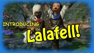 Introducing, Lalafell!
