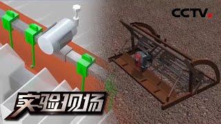 《实验现场》 20200607 栽种实验  CCTV科教