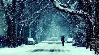 Zedd feat. Hayley Williams - Stay The Night (Tiesto
