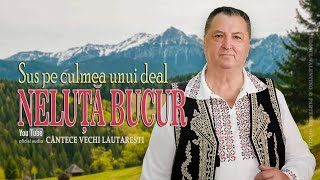 Descarca NELUTA BUCUR - Sus pe culmea unui deal (Colaj 2021)