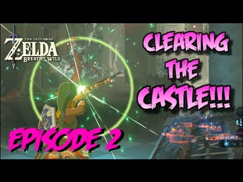 Clearing Hyrule Castle Pt.2 ROYAL GUARD'S WEAPONS!!
