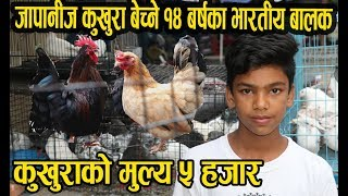नेपालमा जापानीज कुखुरा बेच्ने १४ बर्षका भारतीय बालक │Japanese Bantam │Nepal Chitra