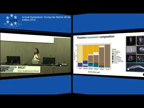 Stable isotopes and their applications in food and nutrition sciences from YouTube · Duration:  34 minutes 3 seconds