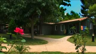 Camping Stel Roda de Barà - Interior Camping