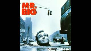 Mr. Big - Nothing But Love