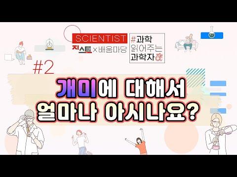 [과학 읽어주는 과학자들, Scientist] #2 개미에 대해서 얼마나 아시나요?
