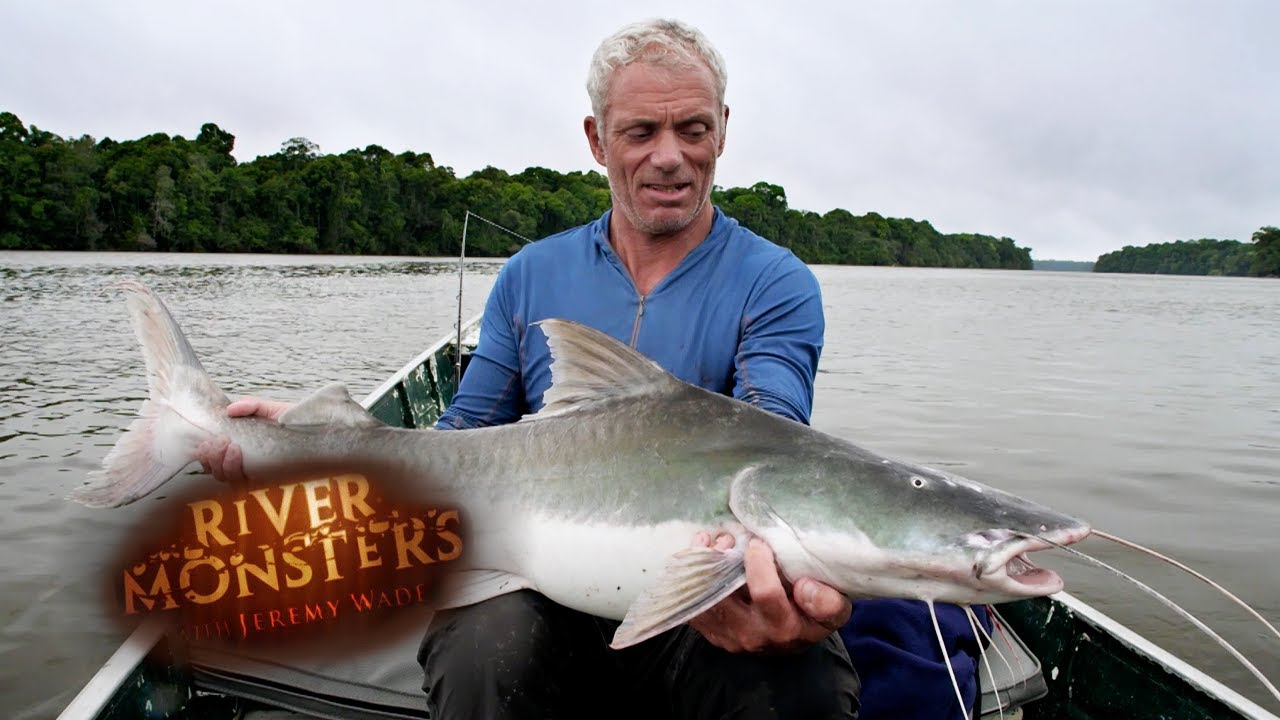 Face To Face With The Mythical Piraiba | SPECIAL EPISODE | River Monsters