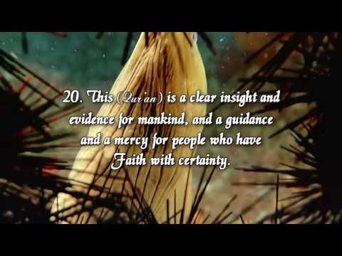45. Surah Al-Jathiyah (The Kneeling)