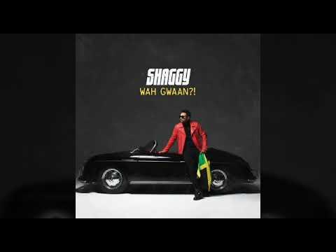 Shaggy - Ketch Mi Up (May 2019) - DiGiTΔL RiLeY™