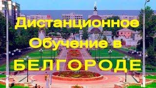 Дистанционное обучение в Белгороде