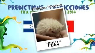 """""""PUKA"""" (Erizon Cavani) la Eriza predice el partido HONDURAS vs SUIZA 2014 MUNDIAL DE FUTBOL"""