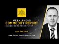 The Gold & Silver Club | Commodity Report: February 20-24, 2017 | Gold – Will The Rally Continue?