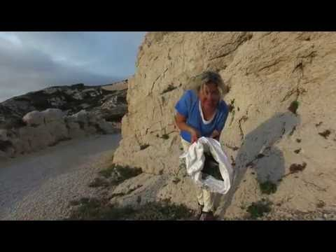 Frioul:  Rock Samphire - Criste Marine - Kaya Koruğu (#04)