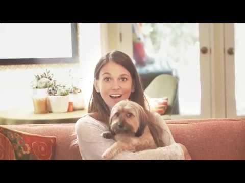 Sutton Foster and her Dachshund Yorkie - Think Adoption First (Petco)