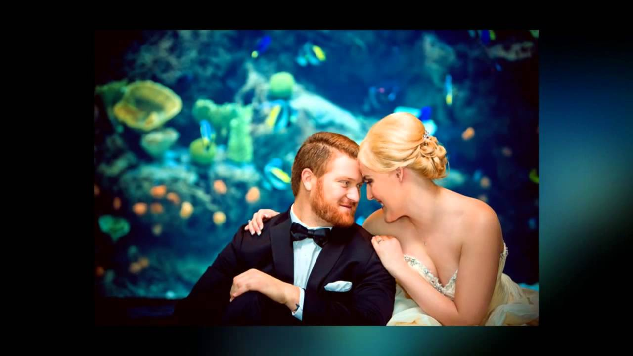 Anitra and Zachary Wedding at Aquarium of The Pacific 113012