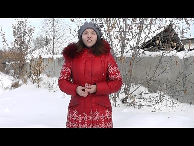 Изображение предпросмотра прочтения – НатальяМорозкина читает произведение «Чародейкою Зимою…» Ф.И.Тютчева