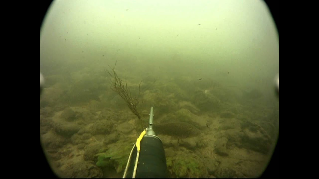 Подводная охота. Речка зима.mp4