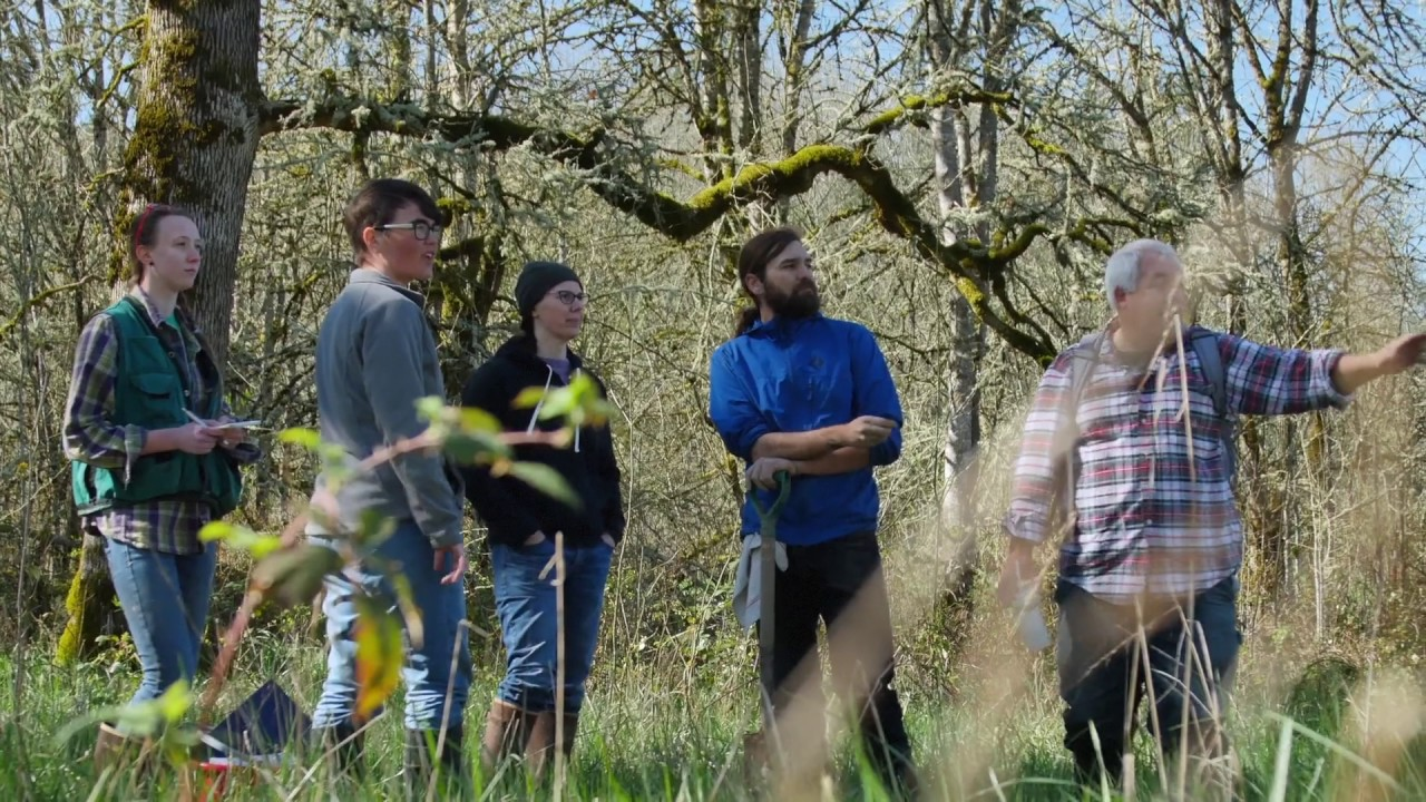 Portland State University Wetland Delineation Professional