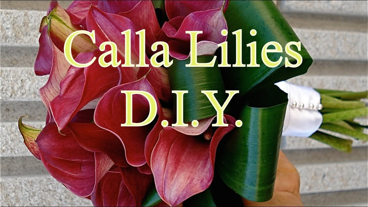 How To Arrange A Calla Lilies Bouquet Youtube