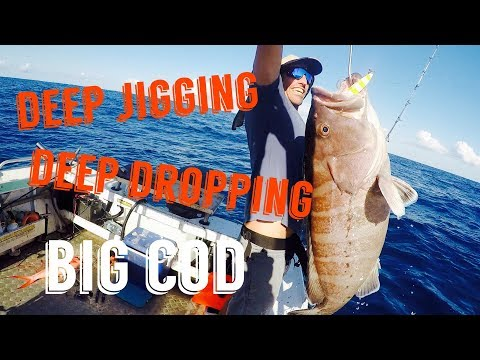 Continental Shelf Jigging And Deep Dropping 2. Miya Epoch X9hp . Simrad S2009.