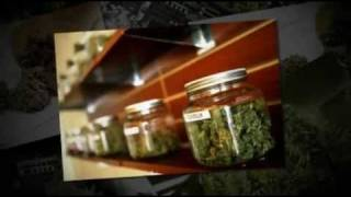 Best Medical Marijuana Deals Alameda County California