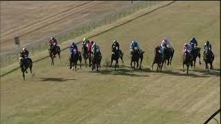 Vidéo de la course PMU PRIX GOLDEN HORSE MEDALLION
